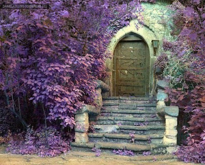 Home away with the fairies for Purple fairy door
