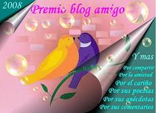 Premio Blog Amigo 2008