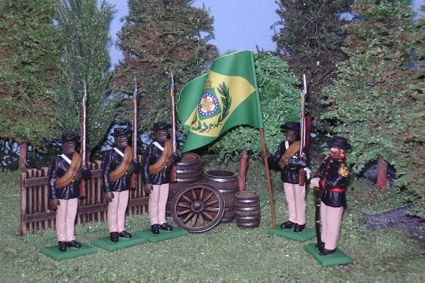 Guerra de la Triple Alianza Infanteria de Linea Brasil
