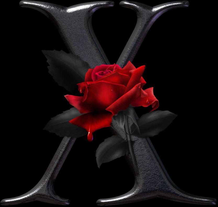 alfabeto gtico con rosas rojas car interior design. Black Bedroom Furniture Sets. Home Design Ideas