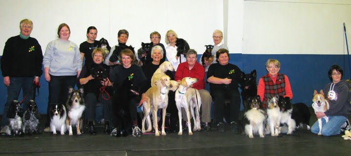 Welcome to Hub City Kennel and Obedience Club