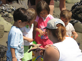 Learning about Sea Stars from Auntie Theresa