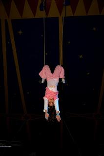 Circus Mondeo