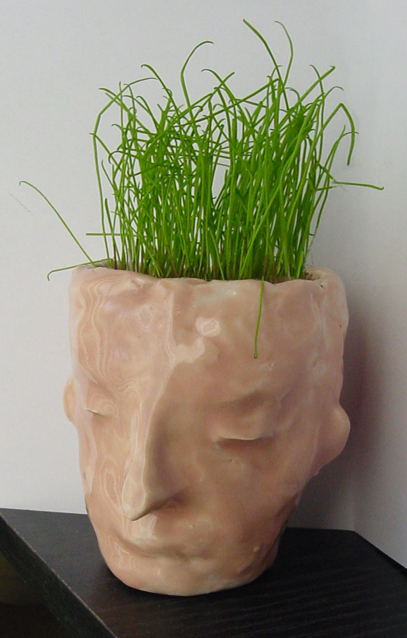 Ceramic Planter Face Art Projects For Kids