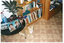 Goulash de kat die mijn vrouwtje liet 'inslapen'