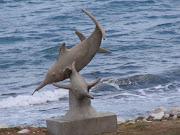 Delfines escondidos de Ponce