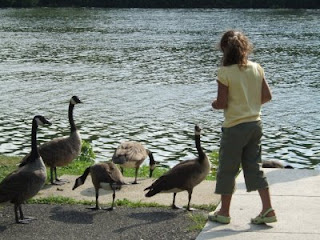 girl with Canada geese