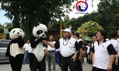 Таиланд. Чианг-май. Праздник - месяц со дня рождения панды