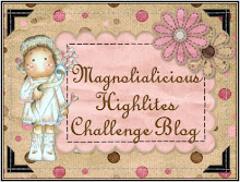 Magnolialicious Highlites Challenge Blog