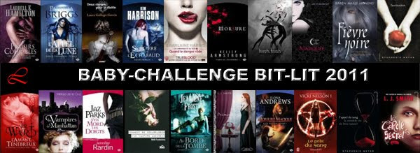 Baby challenge Bit-lit 2011