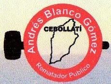 ANDRES BLANCO GOMEZ