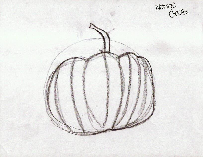Contour Line Drawing Pumpkin : Star sketchers weeks form contours tonal values