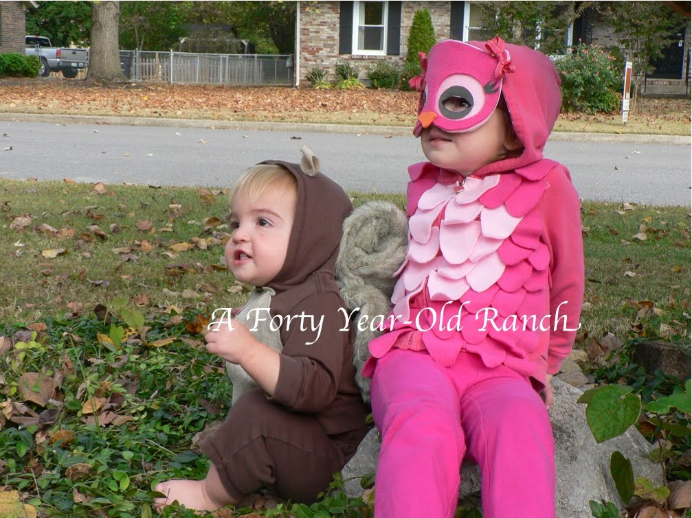 Two costumes for $18? Canu0027t beat that! Julieu0027s girls have been getting lots of  Whooooou0027s and Aweu0027s  in their matching pink owl costumes.  sc 1 st  Pure Joy Events & Pure Joy Events: Owl Costume Parade