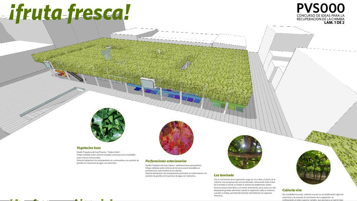 proyectos escolares ecol gicos
