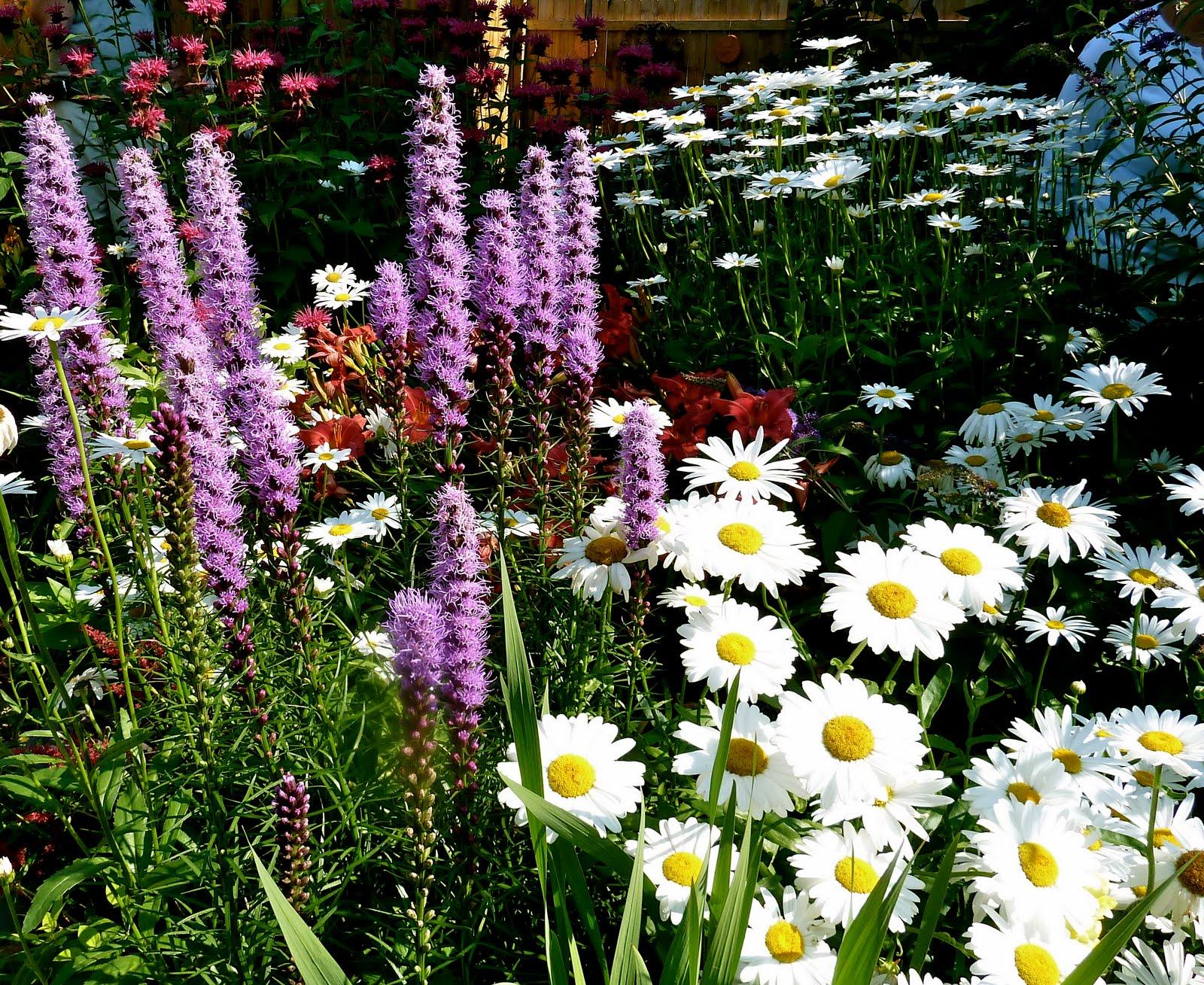 clay and limestone Big Ideas From Small Gardens Buffa10