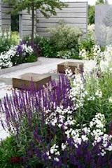 Wijs trädgårdar