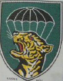 Civilian Iregular Defense Group CIDG INSIGNIA