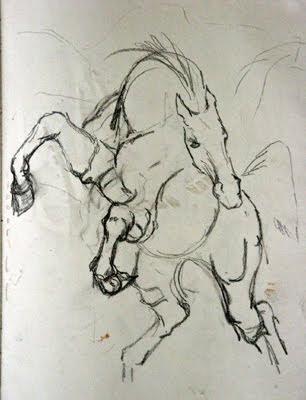 equine sketch