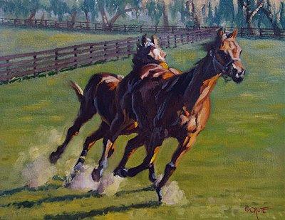 weanlings running