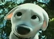 Cute Bolt
