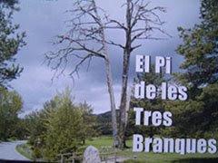 comarca del berguedà