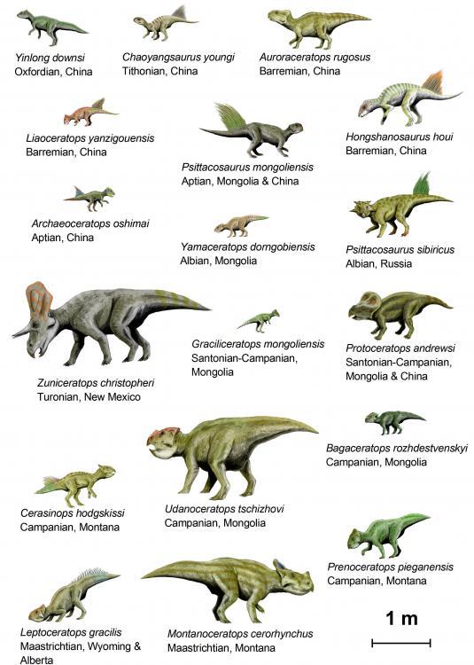 El TRIÁSICO comenzó hace 251 millones de años y acabó hace 202 ...: ceip-azahares-maestro-jmiguel-cuarto.blogspot.com/2010_10_01...
