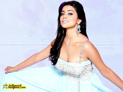 Sexy DESI MASALA Actress Wallpaper Of SHRIYA SARAN Hot Poses
