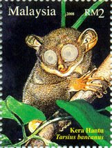Nocturnal Animal RM2 Tarsie Stamp