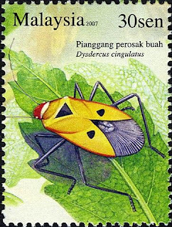 Insects Series 30sen Fruit Bug Stamp