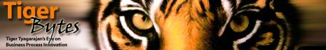 Tiger Bytes