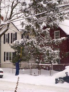 Tremont Lady Cleans Snow From Tree