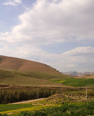 iraqi countryside