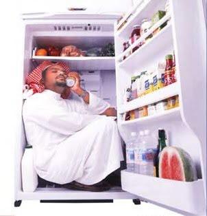 مشاكل الثلاجة
