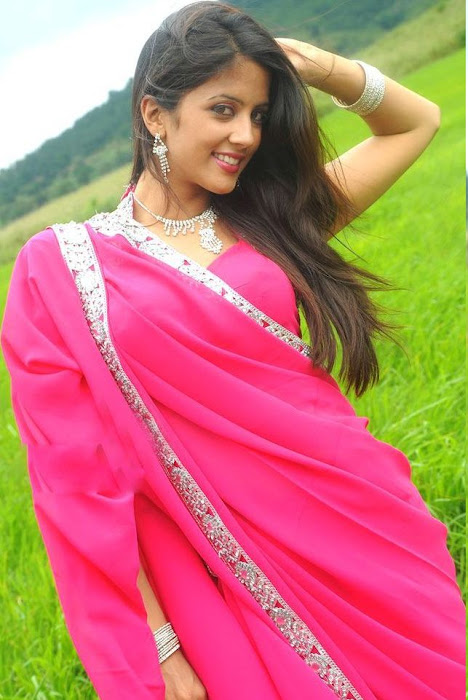 rithika in pink saree hot photoshoot