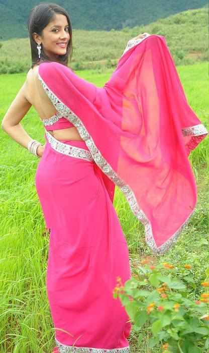 rithika in pink saree glamour  images