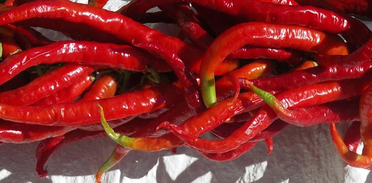 Oliver&#39;s Chili Peppers