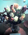 Roses Dan, Dawn and Jaylissa sent us yesterday