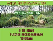 Marchas  Pro-Defensa Madre Tierra