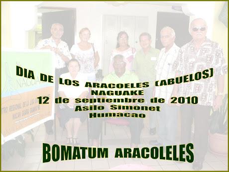 Dia  del  Aracoel