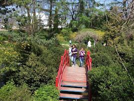 Aspect din vizitarea Grădinii Botanice din Cluj Napoca