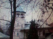 Casa Roznovanu din Parcul Dendrologic