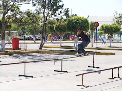 La diversion de los jovenes Patinando.