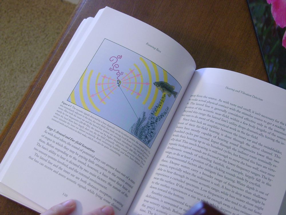 Lunker hunt book review knowing bass the scientific approach to chapter 4 hearing and vibration detection description of the inner ear and lateral line systems gives some good info about what sounds a bass can hear fandeluxe Choice Image