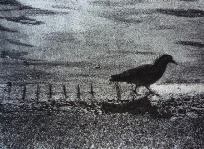 Un Palomo cojo