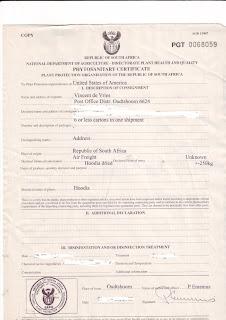 Hoodia phytosanitary certificate