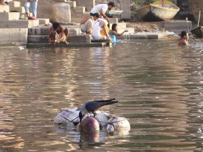 05nyucidiantaramayat Sungai Gangga Di Penuhi Dengan Mayat Terapung