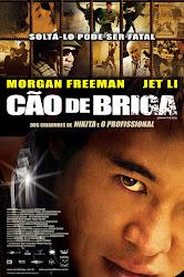 Baixar Filme Cão de Briga (Dublado)