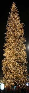L'albero di Natale in Piazza Duomo - Milano, 2008
