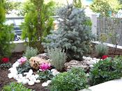 κηπος στον βυρωνα