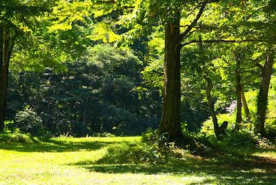 檜枝岐村七入オートキャンプ場